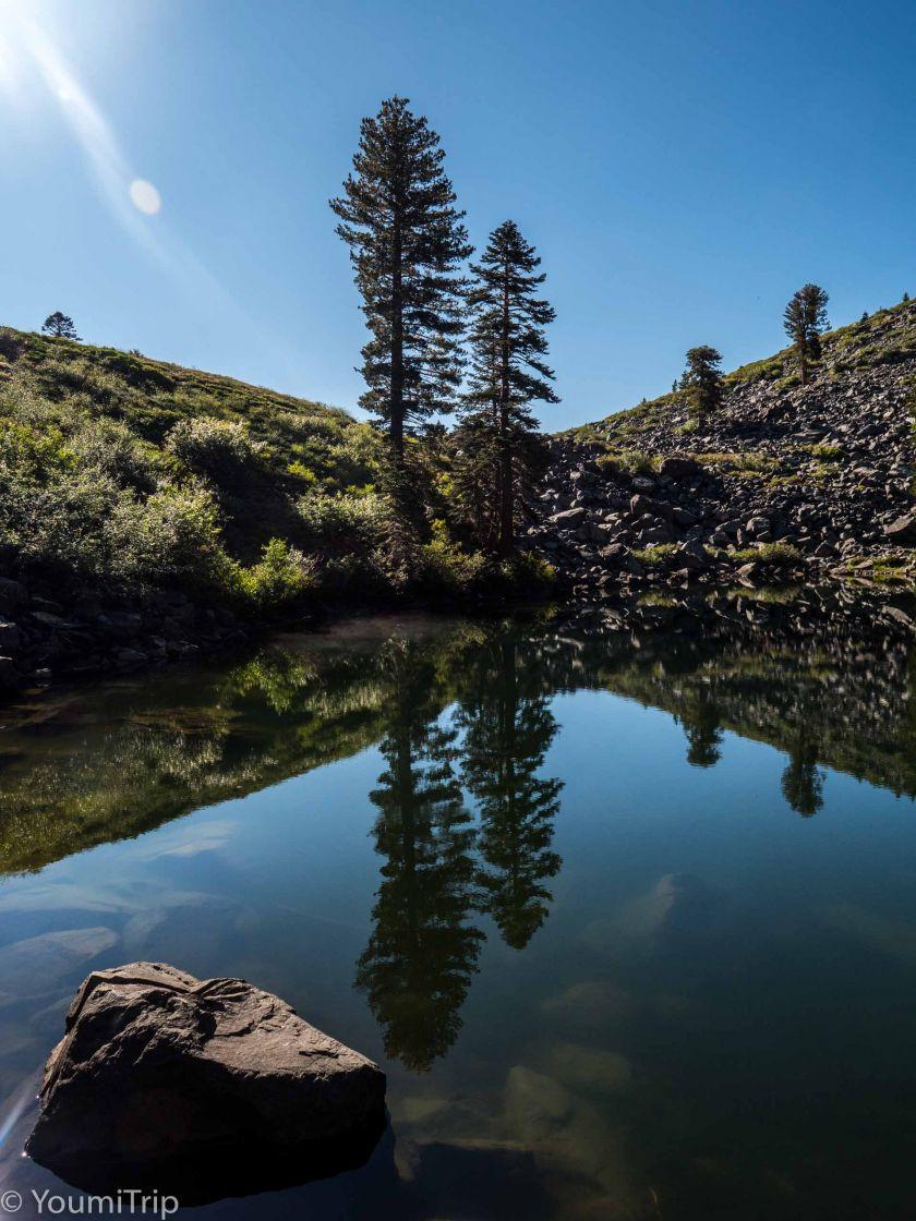 Mt Tallac Track